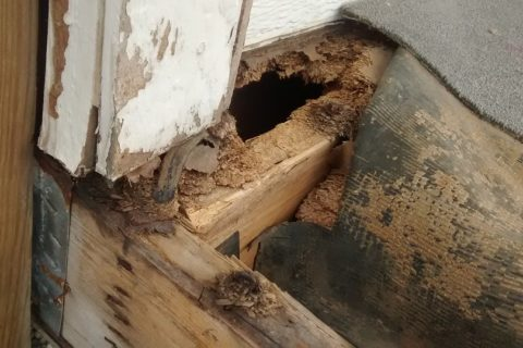 wooden porch damaged